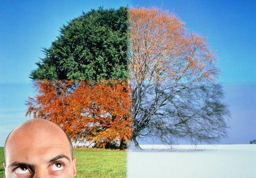 L'Alopecia stagionale