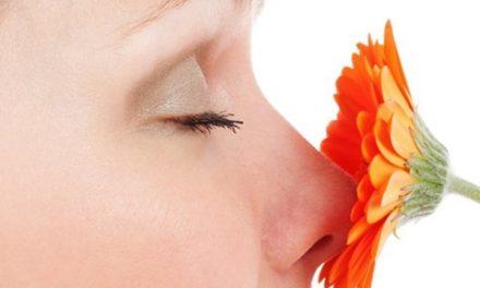 Capelli sensibili agli odori? Profumo contro la calvizie